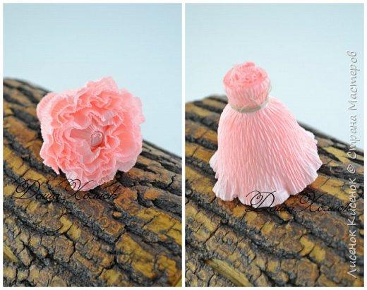 Мастер-класс Свит-дизайн Моделирование конструирование МК розы остинки Бумага гофрированная фото 6