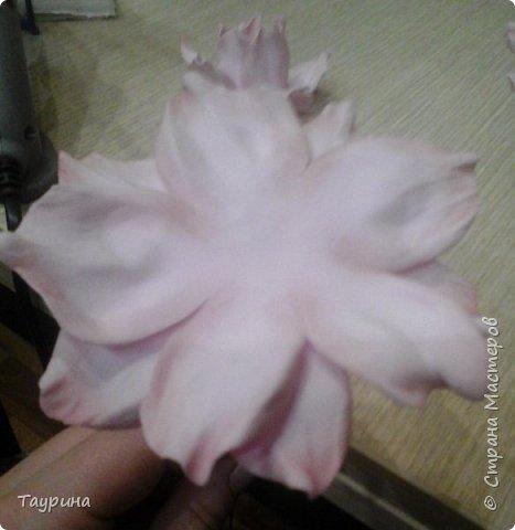 Мастер-класс Свит-дизайн Моделирование конструирование Очень подробный МК цветка из фома для свит-дизайна и не только Фоамиран фом фото 14