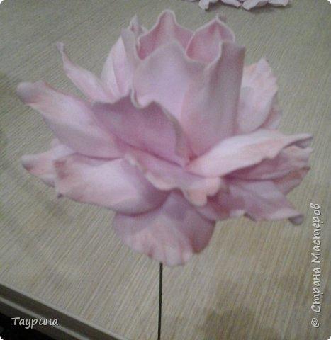 Мастер-класс Свит-дизайн Моделирование конструирование Очень подробный МК цветка из фома для свит-дизайна и не только Фоамиран фом фото 17