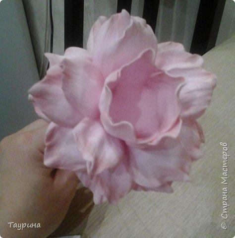 Мастер-класс Свит-дизайн Моделирование конструирование Очень подробный МК цветка из фома для свит-дизайна и не только Фоамиран фом фото 18