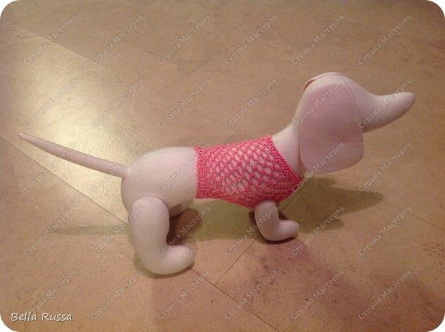 Игрушка Мастер-класс Вязание крючком Шитьё Шьём таксу Розовый Зефир Бусины Нитки Пряжа Ткань фото 19