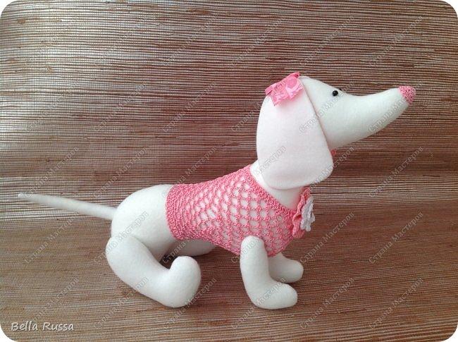 Игрушка Мастер-класс Вязание крючком Шитьё Шьём таксу Розовый Зефир Бусины Нитки Пряжа Ткань фото 24