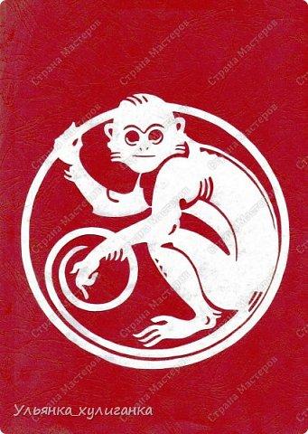 Веселые обезьяны - изображение 0016 года! фотоотпечаток 0