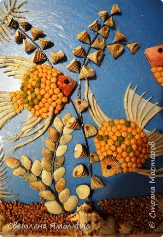 Картина панно рисунок Мастер-класс Ассамбляж Мастер-класс Панно Скалярии  Гуашь Клей Краска Крупа Проволока Ракушки фото 16