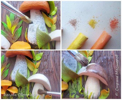 Сегодня я покажу вам некоторые этапы создания панно «Грибная история» из полимерной глины. Для работы нам понадобятся: полимерная глина (запекаемая), скалка или паста-машина, иголочка, зубочистка, резак, краски акриловые, лак глянцевый, зубная щётка и наши волшебные руки и фантазия! фото 13