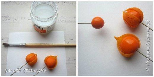 Мастер-класс Украшение Лепка Физалис из полимерной глины Пластика фото 11