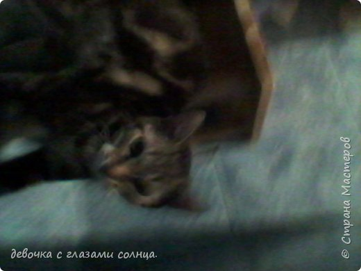 Муся и Маруся снова вместе. фото 5