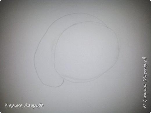 Здравствуйте! Сегодня я Вам покажу как нарисовать мопса. Начнем! фото 2