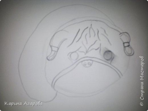 Здравствуйте! Сегодня я Вам покажу как нарисовать мопса. Начнем! фото 4