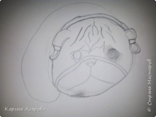 Здравствуйте! Сегодня я Вам покажу как нарисовать мопса. Начнем! фото 5