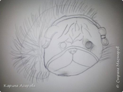 Здравствуйте! Сегодня я Вам покажу как нарисовать мопса. Начнем! фото 6