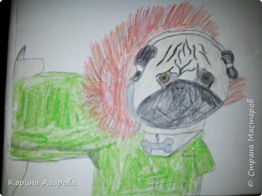 Здравствуйте! Сегодня я Вам покажу как нарисовать мопса. Начнем! фото 12