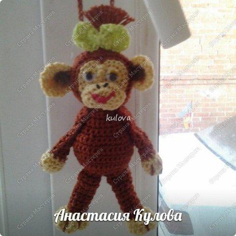 Веселая обезьянка фото 1