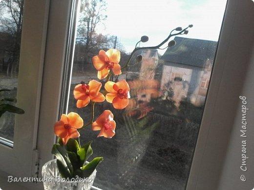 Здравствуйте дороги мастера и мастерицы!!!Смотрите мои новые работы.Первый раз лепила орхидейку.Листочки не получились,ну а веточку прошу оценить. фото 2