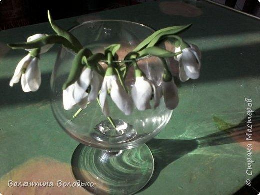 Здравствуйте дороги мастера и мастерицы!!!Смотрите мои новые работы.Первый раз лепила орхидейку.Листочки не получились,ну а веточку прошу оценить. фото 10