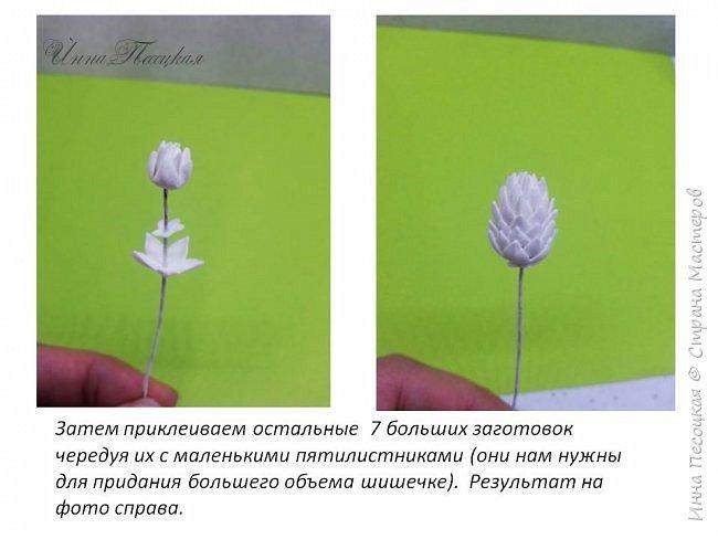 Мастер-класс Флористика искусственная Моделирование конструирование Хмель из фоамирана Фоамиран фом фото 10