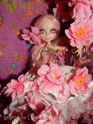 Приветствую всех, кто зашел в гости!  Недавно у Повелительницы Драконов появилась комната. Ну не может же столь важная персона быть бездомной)) Я решила сделать спальню для Вирджин розового цвета, в тон цветам на платье. Давайте рассмотрим ее поподробнее. фото 16
