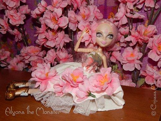 Приветствую всех, кто зашел в гости!  Недавно у Повелительницы Драконов появилась комната. Ну не может же столь важная персона быть бездомной)) Я решила сделать спальню для Вирджин розового цвета, в тон цветам на платье. Давайте рассмотрим ее поподробнее. фото 17