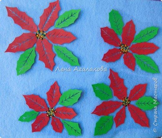 Продолжаю вырезать к празднику. Сегодня у меня Пуансетия, красивый рождественский цветок. Все цветочки я как обычно заклеила в прозрачную пленку (заламинировала), так что их и на елочку можно повесить и просто украсить дом ...   фото 2