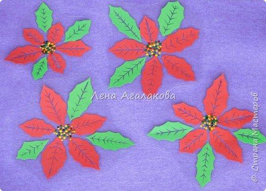 Продолжаю вырезать к празднику. Сегодня у меня Пуансетия, красивый рождественский цветок. Все цветочки я как обычно заклеила в прозрачную пленку (заламинировала), так что их и на елочку можно повесить и просто украсить дом ...   фото 3