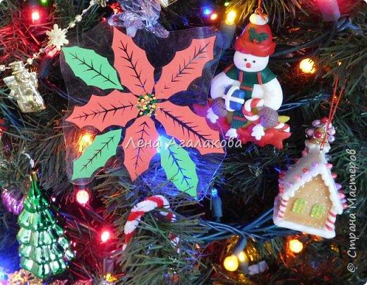 Продолжаю вырезать к празднику. Сегодня у меня Пуансетия, красивый рождественский цветок. Все цветочки я как обычно заклеила в прозрачную пленку (заламинировала), так что их и на елочку можно повесить и просто украсить дом ...   фото 4