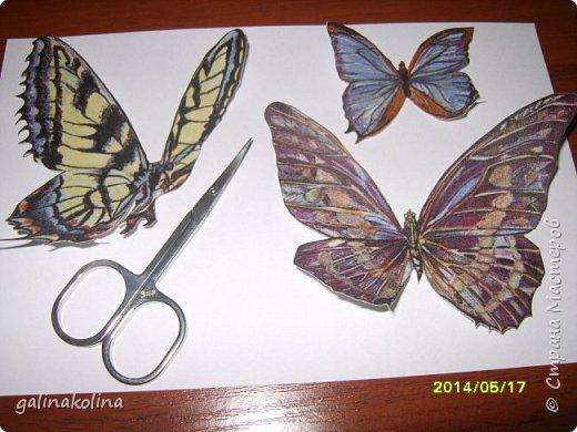 Мастер-класс Поделка изделие Декупаж Моделирование конструирование Бабочек я делаю так  Клей Проволока Салфетки Ткань фото 5