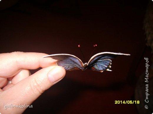 Мастер-класс Поделка изделие Декупаж Моделирование конструирование Бабочек я делаю так  Клей Проволока Салфетки Ткань фото 13