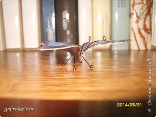 Мастер-класс Поделка изделие Декупаж Моделирование конструирование Бабочек я делаю так  Клей Проволока Салфетки Ткань фото 14