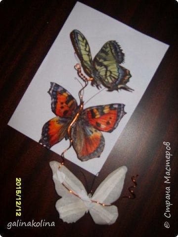 Мастер-класс Поделка изделие Декупаж Моделирование конструирование Бабочек я делаю так  Клей Проволока Салфетки Ткань фото 10