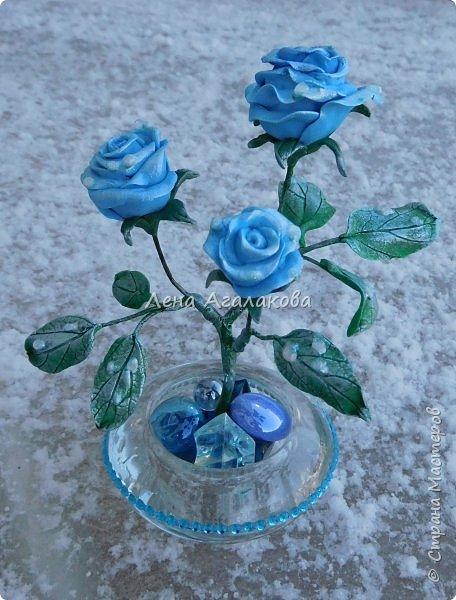 Добрый вечер или утро ! Сегодня я к вам с синими розами . На улице зима и розы получились зимними с замерзшими капельками росы. Лепила из холодного фарфора. Сделана эта композиция в подарок . фото 1