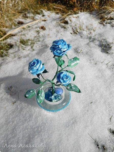Добрый вечер или утро ! Сегодня я к вам с синими розами . На улице зима и розы получились зимними с замерзшими капельками росы. Лепила из холодного фарфора. Сделана эта композиция в подарок . фото 2