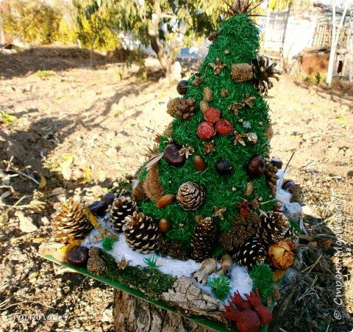 Елочка в школу ,сделана вся из природного материала.Семейная коллективная работа. фото 4