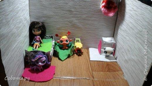 Привет меня зовут Вася а моих животных Лапка Сакура и Линда фото 1
