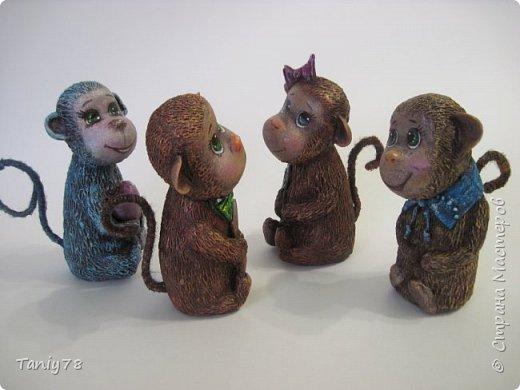 Здравствуйте,дорогие мастера и мастерицы!У меня появилась вторая(не последняя) семейка обезьянок,вполне себе таких упитанных,в отличии от предыдущих стройняшек :) http://imgsm.ru/img4/i2015/11/12/390083_img_1367.jpg  фото 5