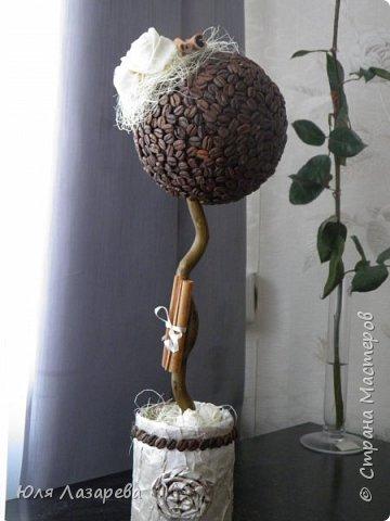Зерна кофе клеила в 2 слоя, розочки сшиты из шелка (полосочки резала и шила).  фото 1