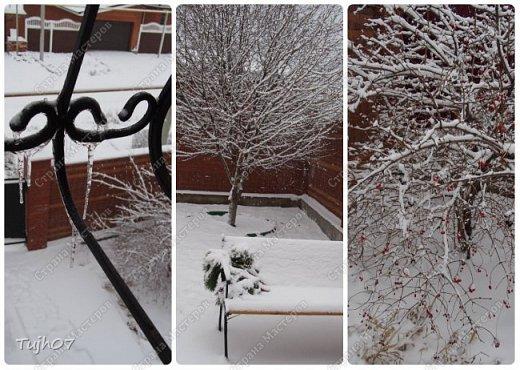Ах, какое чудо!!! Ах, какая красота!!! Так я могу сегодня сказать, т. к. с утра, выглянув в окно, дождались мы зимы!!! С вечера и всю ночь порошил снежок, безветренно, морозно... Началось волшебство и вот-вот начнет свой рассказ новогодняя сказка...  фото 10