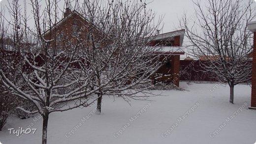 Ах, какое чудо!!! Ах, какая красота!!! Так я могу сегодня сказать, т. к. с утра, выглянув в окно, дождались мы зимы!!! С вечера и всю ночь порошил снежок, безветренно, морозно... Началось волшебство и вот-вот начнет свой рассказ новогодняя сказка...  фото 11