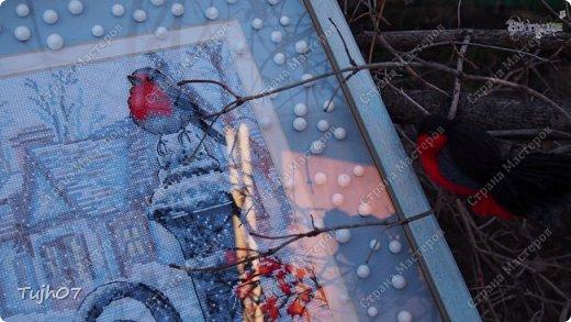 Ах, какое чудо!!! Ах, какая красота!!! Так я могу сегодня сказать, т. к. с утра, выглянув в окно, дождались мы зимы!!! С вечера и всю ночь порошил снежок, безветренно, морозно... Началось волшебство и вот-вот начнет свой рассказ новогодняя сказка...  фото 5