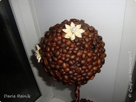 Кофейное дерево для свекрови на Новый год,она обожает кофе. фото 5
