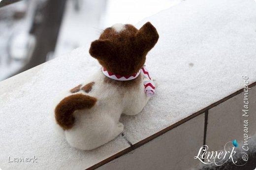 Маленькая, озорная чихуашка Маргари выполнена в технике сухое валяние из натуральной овечьей шерсти нескольких цветов. Глазки стеклянные. Подушечки на лапках приваляны. На левом боку пятнышки в виде двух сердечек. В хвостике проволочный каркас, что позволяет несколько менять его положение.   Авторская работа Lemek, щенок единственный и неповторимый, 2015 г фото 7