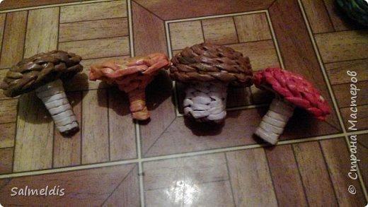 Доброго времени суток Уважаемы Мастера!!! Вот такую корзинку отнесли с ребенком в садик еще осенью, вместо цветов воспитателю )))) фото 6