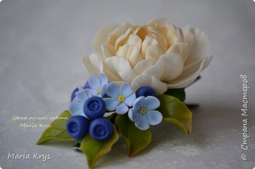 Доброго времени суток! Давно я тут не появлялась.. Решила с вами поделится фотографиями цветочков. фото 1