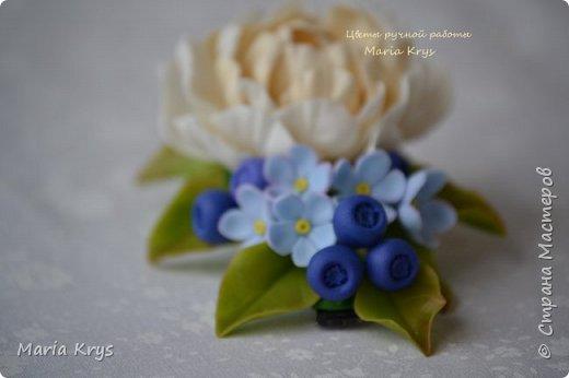 Доброго времени суток! Давно я тут не появлялась.. Решила с вами поделится фотографиями цветочков. фото 2