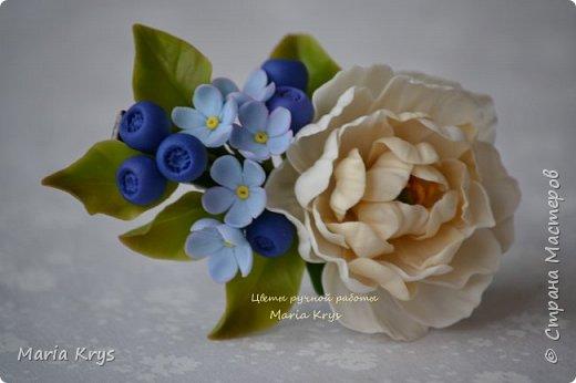 Доброго времени суток! Давно я тут не появлялась.. Решила с вами поделится фотографиями цветочков. фото 4