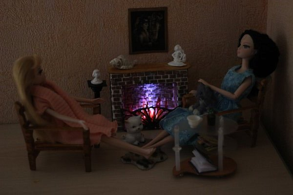 Соня Лиде в подарок на Новый год заказала камин. фото 1