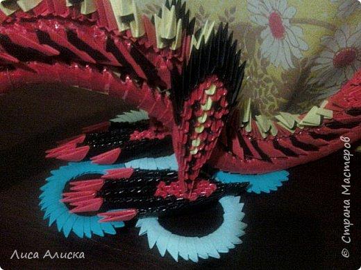 Дракон фото 3