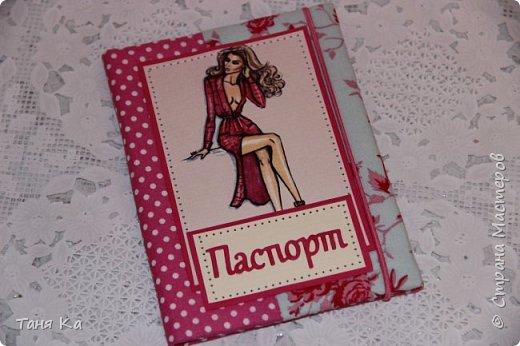 Всем привет! Сделала еще три обложечки на паспорт. Так мне нравится их делать))))...У меня совсем не новогоднее настроение...Нет вдохновения на новогодние открытки...Творю, что душе угодно) фото 6