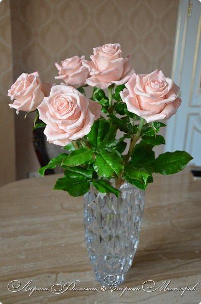 Добрый день всем ! Букет из пяти розовых роз. Сделан на заказ. Фотографий много, при разном освещении. Приятного просмотра. фото 4
