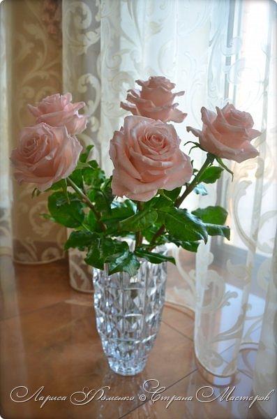 Добрый день всем ! Букет из пяти розовых роз. Сделан на заказ. Фотографий много, при разном освещении. Приятного просмотра. фото 13