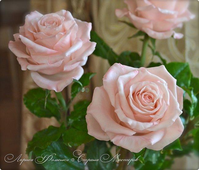 Добрый день всем ! Букет из пяти розовых роз. Сделан на заказ. Фотографий много, при разном освещении. Приятного просмотра. фото 5